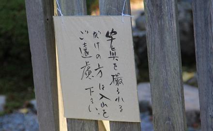 Ami_3263a