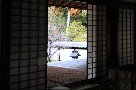 Ami_9901a